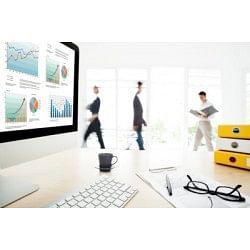 €29 Microsoft Excel - 300 Module Masterclass Online Course