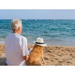 €29 Pet Bereavement Counsellor Diploma Course